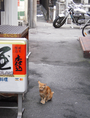 Moving File 20100919