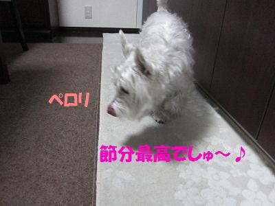 110203012.jpg