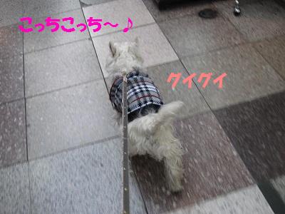 110216002.jpg
