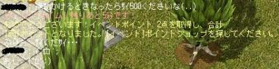 AS2010092521552004.jpg