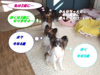 01-01_20100102233016.jpg