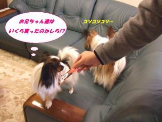 01-11_20100102233200.jpg