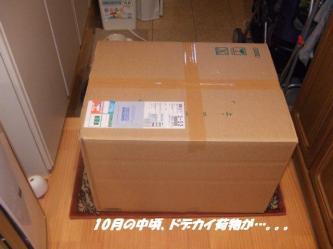 02-01_20091202091013.jpg