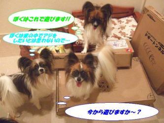 02-04_20091202091043.jpg