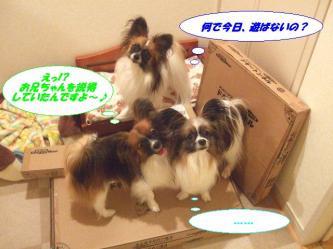 02-06_20091202091103.jpg