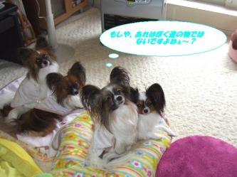 10-04_20091211105353.jpg