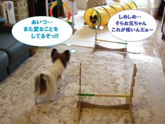 11-10_20100112153530.jpg
