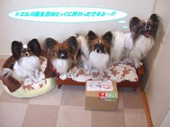 13-04_20091213222235.jpg
