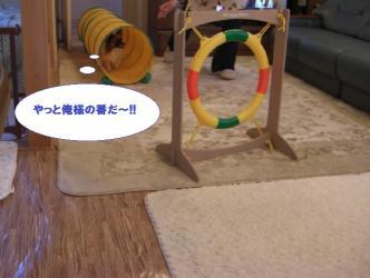 17-04_20100117232106.jpg