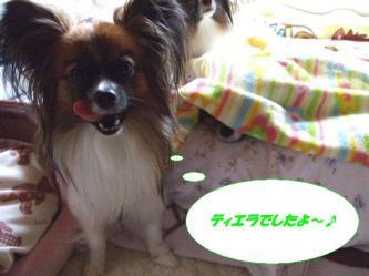 17-05_20091218001409.jpg
