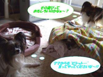 17-09_20091218001453.jpg