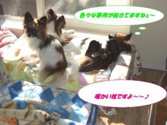 21-01_20091221093624.jpg