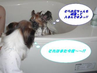 27-04_20091230091625.jpg