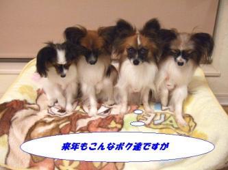 31-02_20091231221126.jpg