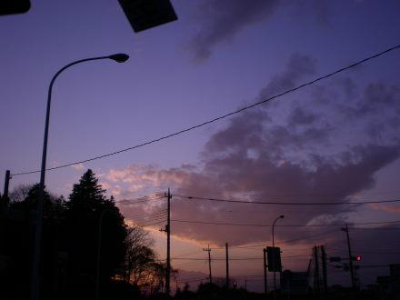 夕陽1214