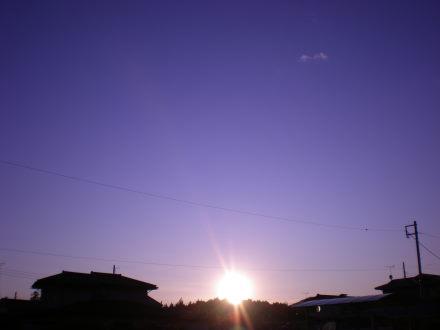 夕陽1220