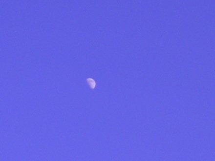 お月さま1226
