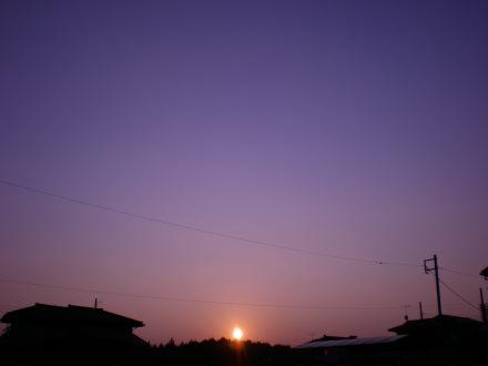 夕陽1226