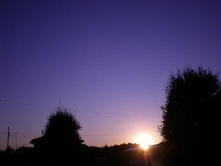 夕陽1229
