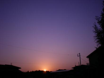 夕陽1230