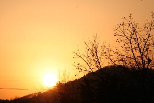 夕陽111