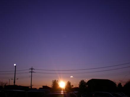 夕陽113