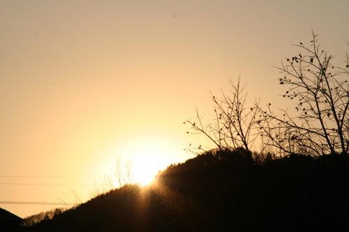 夕陽116