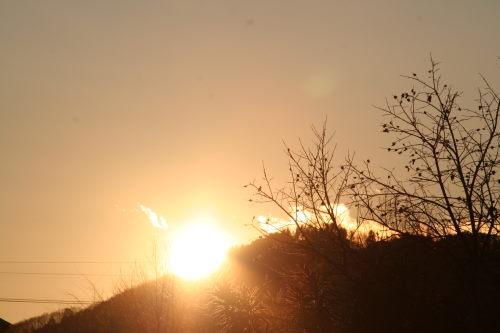 夕陽117の1