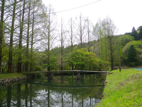 釣り堀430