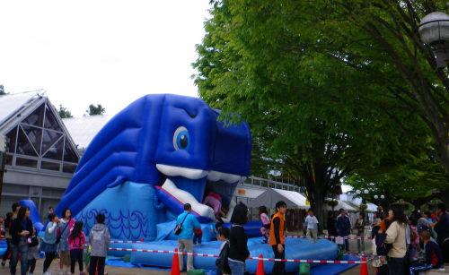 クジラ55