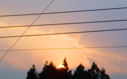 夕陽518