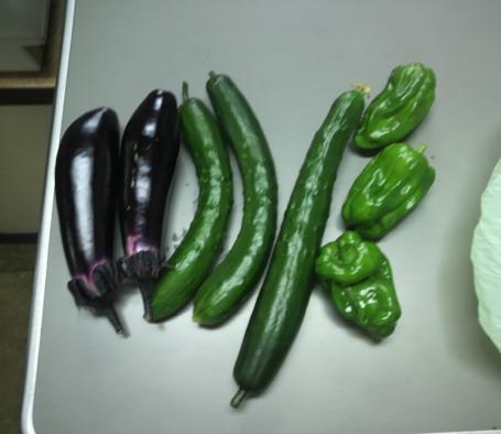 新鮮野菜だい
