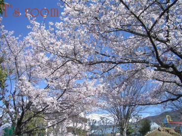 058_20100409161314.jpg