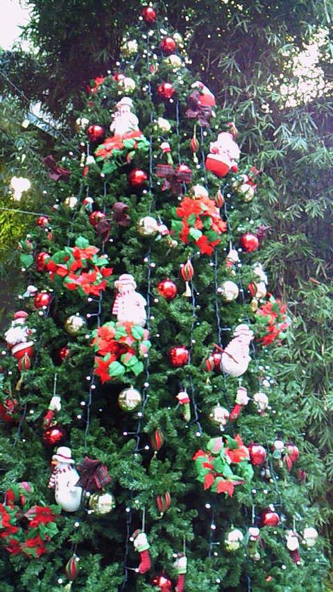 中華街のクリスマスツリー