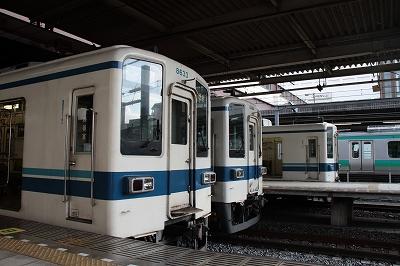20101219-3