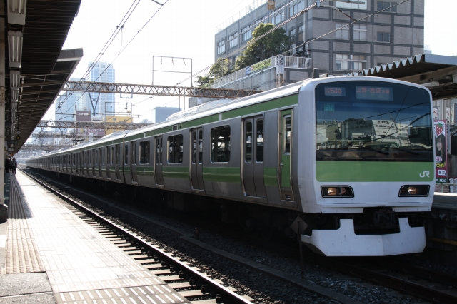 20101229-3