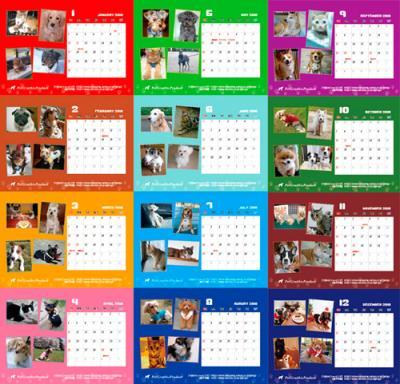 calendar-2_convert_20100104142418.jpg