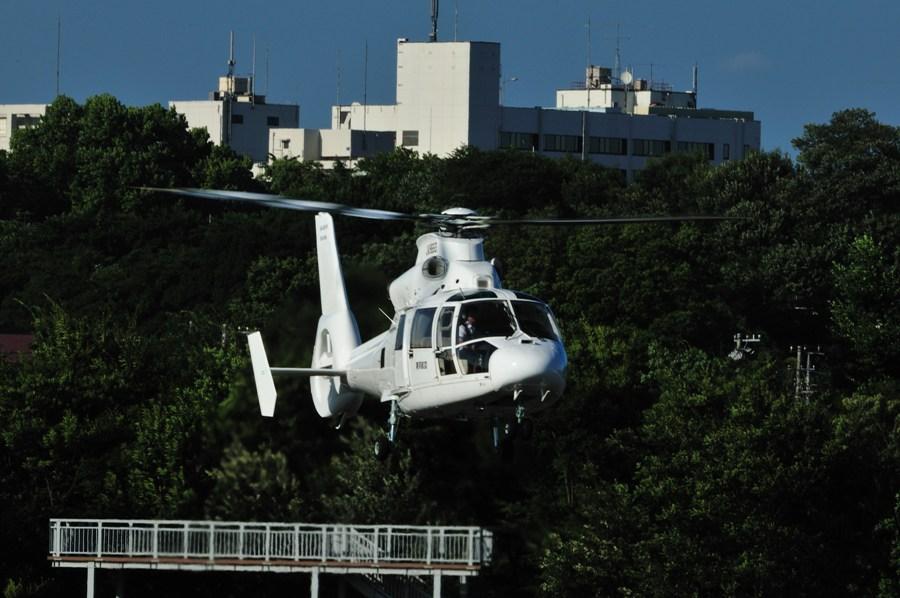コピー ~ 2010-08-06調布飛行場-007