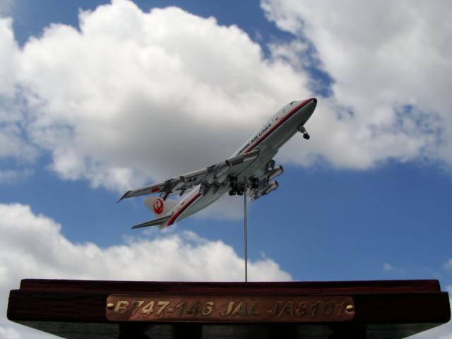 JALクラシックジャンボ17 (5)