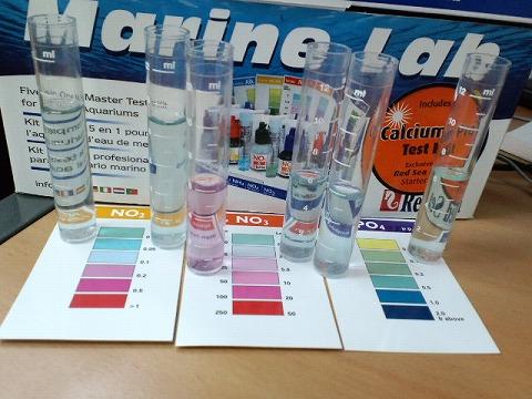 水質検査100306