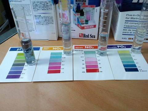 水質検査100711
