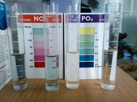 水質検査100813
