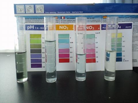 水質検査100929前