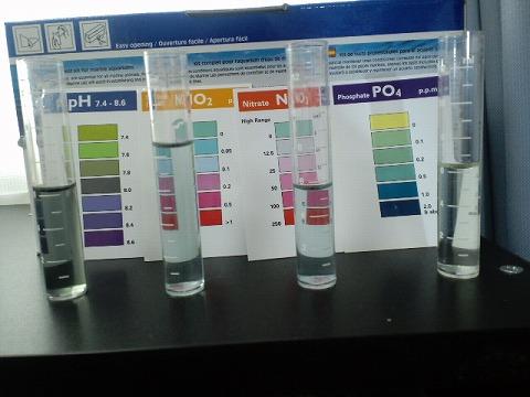水質検査100929後