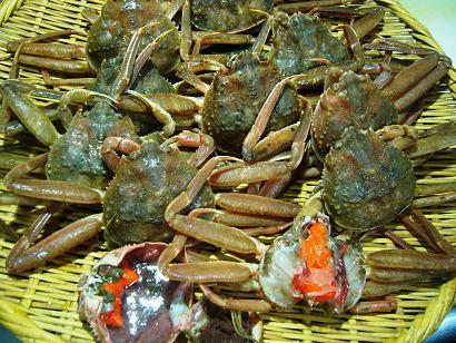 せいこ蟹 (5)小