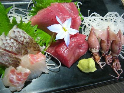 桜鯛・本マ・ホタル小