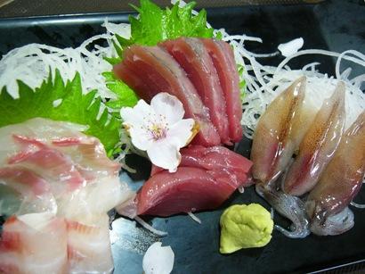 ホタル・鯛・カツオ1 (3)小