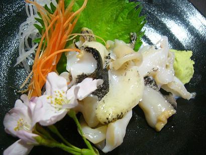 つぶ貝刺身2 (3)小