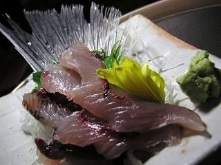飛び魚1 (6)