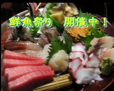鮮魚祭り 開催中